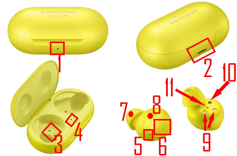 Layout of Galaxy Buds and the charging case